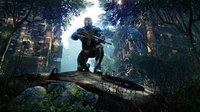 Crysis 3 screen 5   Assess Adapt Attack